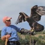 Man and eagle