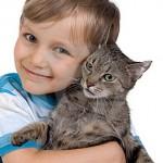 boy-hugging-cat-thumb2088577