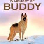 buddy 1